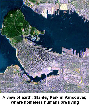 A view of earth: Stanley Park in Vancouver, where homeless humans are living